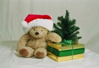 christmas-bear-1469380-639x440